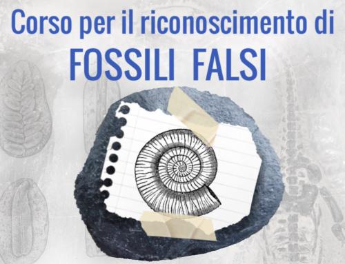 Corso Riconoscimento Fossili Falsi