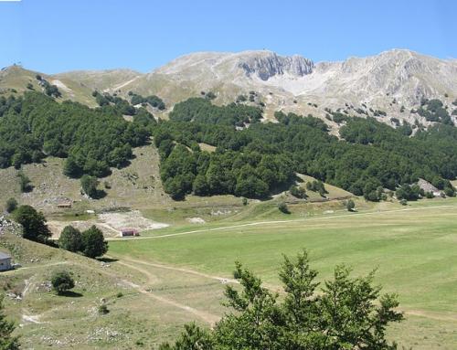 Escursione Domenica 18 Ottobre – Monte Miletto (Molise)
