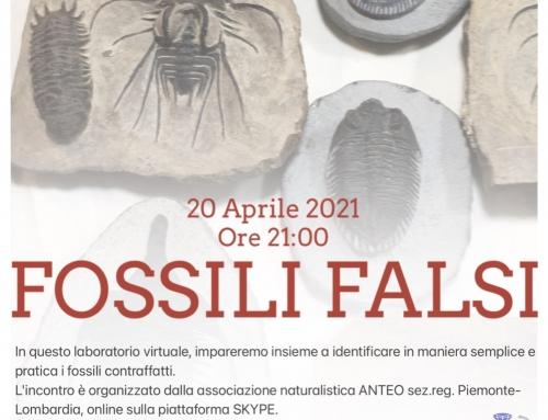 "Laboratorio ""Fossili Falsi"""
